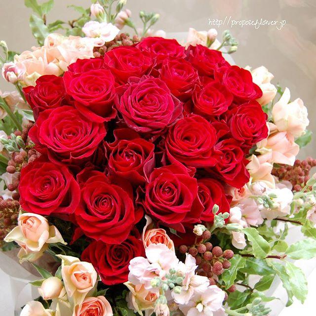 赤い薔薇プロポーズ