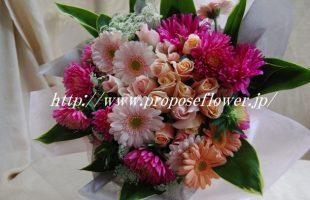 アスターとガーベラのキュートな花束